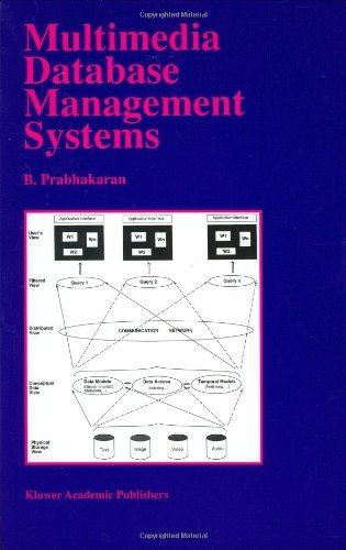 Multimedia Database Management Systems (The Springer International Series in Engineering and Computer Science)