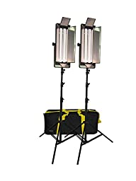 Studiohut 220W Continuous Fluorescent Light Kit with Barn Doors and carry bag