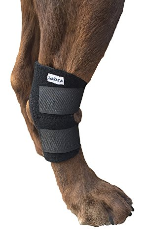 dog-canine-rear-leg-hock-joint-wrap-protects-wounds-as-they-heal-compression-brace-heals-and-prevent
