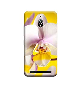 EPICCASE Premium Printed Mobile Back Case Cover With Full protection For Asus Zenfone Go (Designer Case)