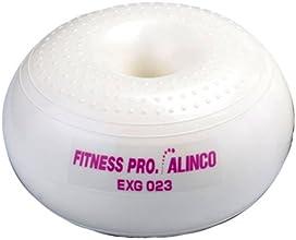 ALINCO(アルインコ) エクササイズハンディボール(1.0kg 2個組) EXG023