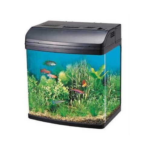 Tropical fish 20 litre tank fish tank complete set up for Aquarium 20 litres