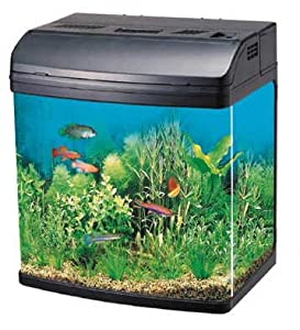 R331 20 litre capacity complete glass aquarium fish tank for Outdoor fish tank uk