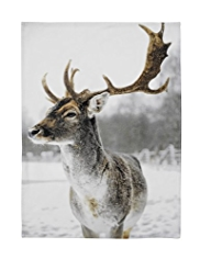 Photographic Reindeer Tea Towel