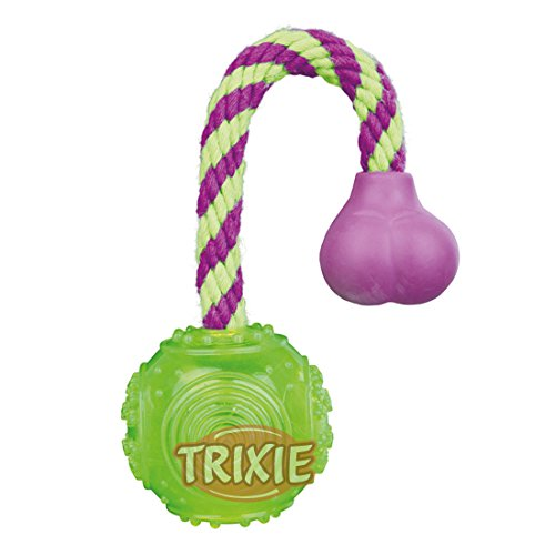 Trixie Ball On A Rope Thermoplastic Rubber Dog Toy (Floatable)