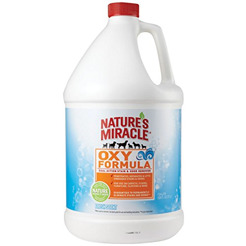 Nature's Miracle Oxy Stain and Odor Remover, Fresh Scent, 1 Gallon