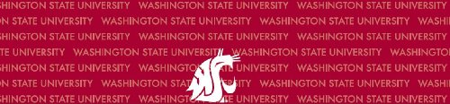 Washington State Cougars Team Auto Visor Decal