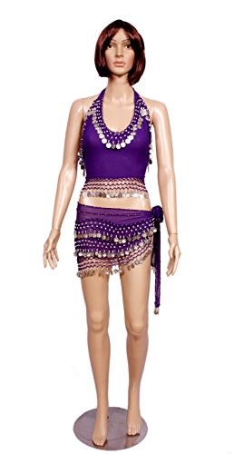 A 2pc Set of Purple Belly Dance Skirt-top & Beaded Hip Scarf Costume Set