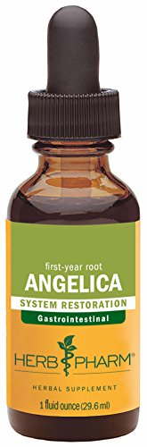 Herb Pharm Certified Organic Angelica Root Extract for Digestive Support - 1 Ounce