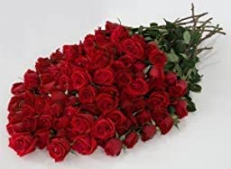 100 Roses Red- Fresh Cut Flowers, 100 Long Stem Red Roses