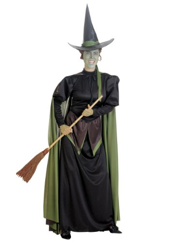 The Wicked Witch of West Costume