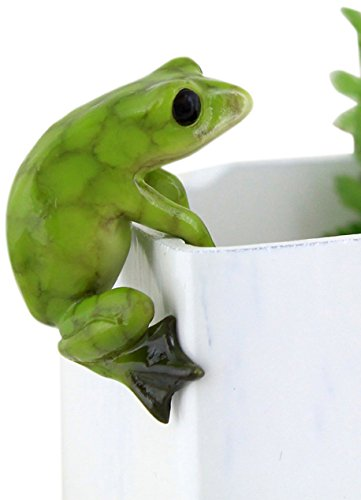 Top Collection Miniature Fairy Garden and Terrarium Frog Flower Pot and Vase Hugger, Mini (Miniature Resin Frog compare prices)