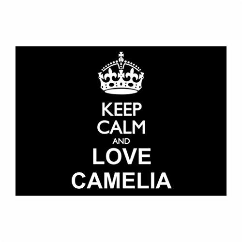 teeburon-keep-calm-and-love-camelia-pack-de-4-pegatinas