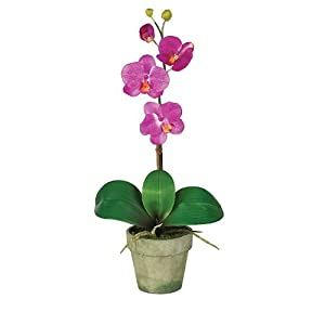Phalaenopsis Silk Orchid Flower Arrangement