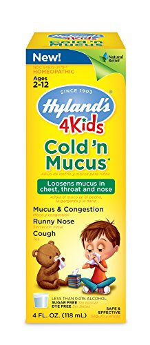 buy Hyland'S 4 Kids Cold And Mucus Congestion Relief Liquid, Natural Flavor And Natural Cold Relief, 4 Ounce