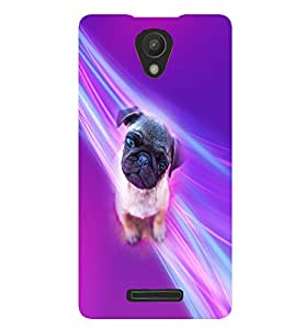 PrintVisa Animal Cute Pug 3D Hard Polycarbonate Designer Back Case Cover for Xiaomi Redmi 3S
