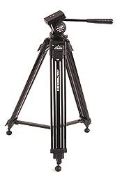 Davis & Sanford PROVISTA6510 Provista65 Tripod with V10 Head for Cameras