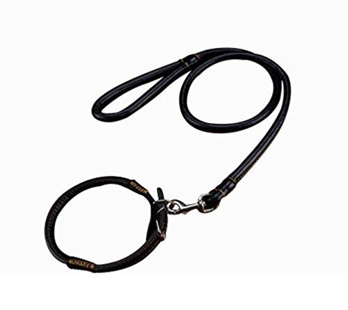 Freerun Classic PU Leather Rolled Dog Leash with Collar High Quality Walkig Training Leash - Black, L