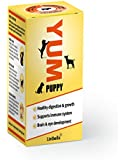Yum Puppy Food 35 g