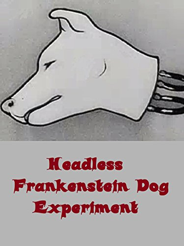 Headless Frankenstein Dog Experiment