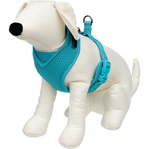 petco-adjustable-mesh-harness-for-dogs-in-teal-by-petco