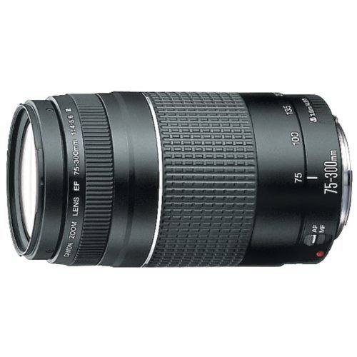 Canon-EF-75-300mm-f4-56-III-Telephoto-Zoom-Lens-for-Canon-SLR-Cameras-Certified-Refurbished
