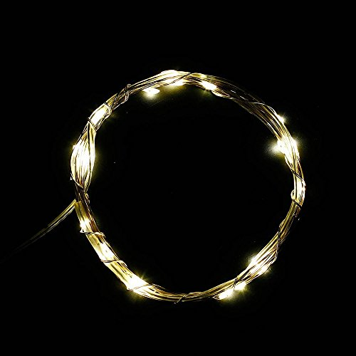 Dumvoin(Tm) 10Ft/3M 30 Leds Rgb Fairy Led Wire String Lights/Starry Starry Lights With Timer Battery Box,Indoor And Outdoor String Lights Battery Operated For Festival, Christmas, Wedding, Holiday And Party Stage/Garden - Warm White Color[Newest Version]