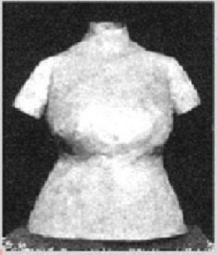 HOW TO MAKE A HOMEMADE DRESSFORM of Your EXACT Body Shape & Size! (sewing sew dress form Kindle download e-book ebook vintage)