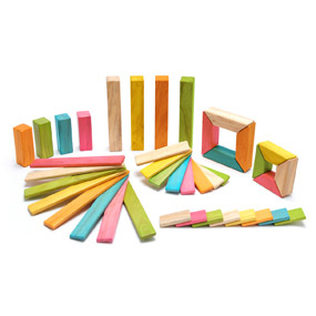 40 Piece Explorer Set Tints from Tegu