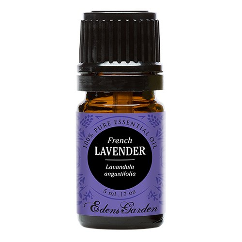 French Lavender 100% Pure Therapeutic Grade Essential Oil by Edens Garden- 5 ml