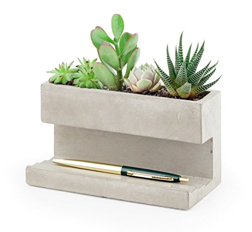 large-concrete-desktop-planter