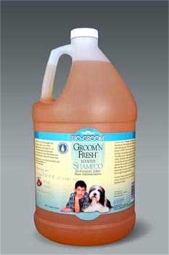 Bio-Groom Groom 'N Fresh Dog and Cat Conditioning Shampoo, 1-Gallon