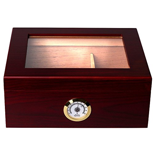 Mantello 25-50 Cigar Desktop Humidor Royale Glasstop (Desk Cigar Cutter compare prices)