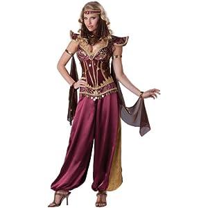InCharacter Costumes, LLC Desert Jewel, Burgundy/Gold, X-Large