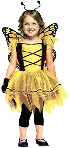 baby-girls - Ballerina Butterfly Gold Toddler Costume 3T-4T
