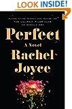 Perfect: A Novel