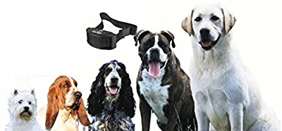 SPECIAL SALE Donidin No Bark Collar, 15-120 Pounds, Small-large Dogs, 7 Adjustable Sensitivity Control Levels Stimulation of No Harm Dog, Training E-book As Free Bonus, 10% Off Purchase of 2 Items