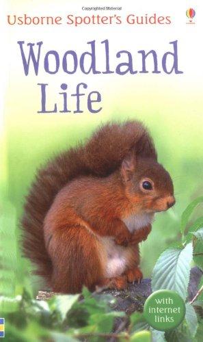 woodland-life-usborne-spotters-guide