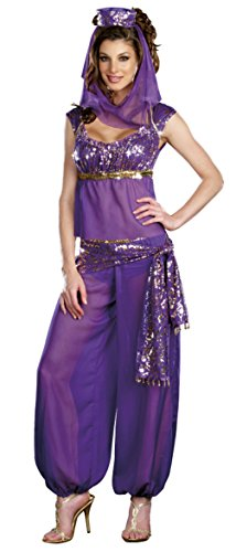 Dreamgirl Womens Ally Kazaam Genie Belly Dancer Outfit Fancy Dress Sexy Costume