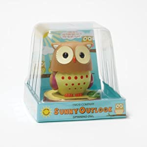 Two's Company Sunny Outlook Solar Powered Head Turning Owl in Gift Box