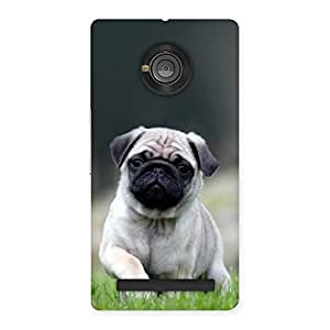 Delighted Pug Dog Grass Multicolor Back Case Cover for Yu Yuphoria