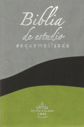 Biblia de Estudio Esquematizada-Rvr 1960