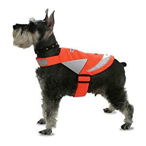 Lighted Pet Vest, Small, Blaze Orange