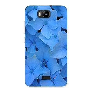 Impressive Blue Flower Bush Back Case Cover for Honor Bee