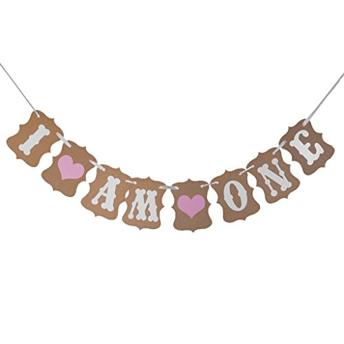 i-am-one-writing-baby-shower-birthday-party-bunting-banner-decoration-photo-prop