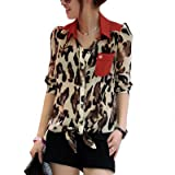 Women Long Sleeve Leopard Prints Semi Sheer Chiffon Blouse