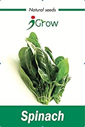 Naturally Treated Organic Spinach Seeds