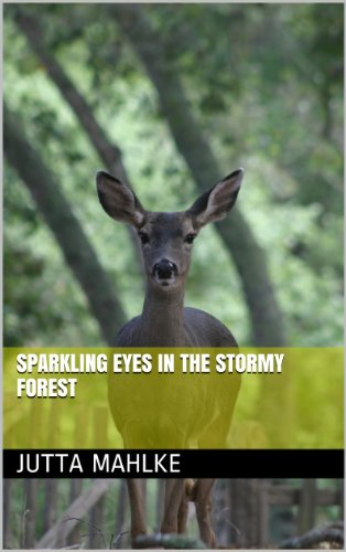 sparkling-eyes-in-the-stormy-forest-dual-language-ebook-book-8-english-edition