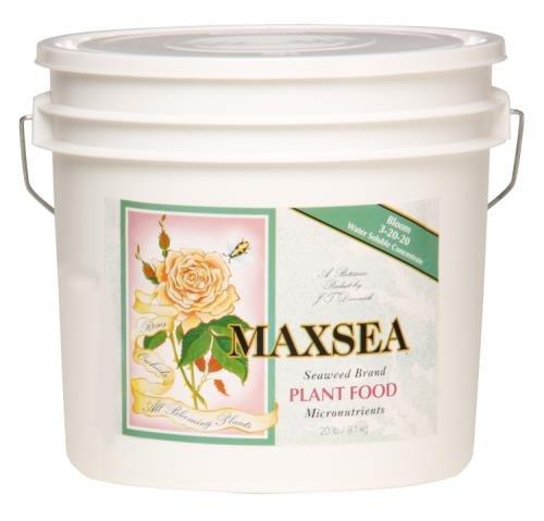 maxsea-722275-bloom-plant-food-20-lb