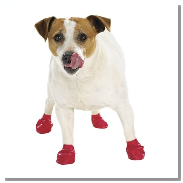 Pawz Red Water-Proof Dog Boot, Small, Up to 2-1/2-Inch